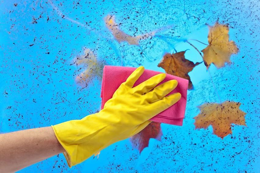 Husrengöringslistan för hösten